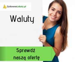 Waluty online