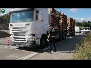Read more about the article Za ciężkie transporty drewna